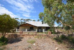 306 Lizzy Well Road, Galga, SA 5308