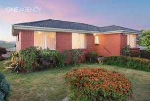 8 Armitage Cresent, Shorewell Park, Tas 7320