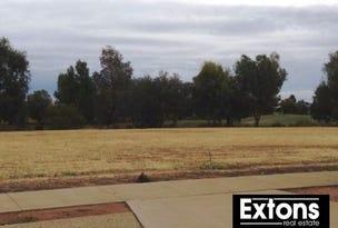 41/43 Phillip Hyland Drive, Yarrawonga, Vic 3730