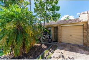 21 Eucalyptus Court, Oxenford, Qld 4210