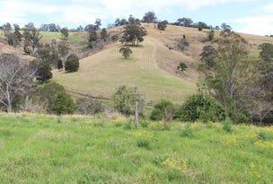 673 Titaatee Creek Rd, Gloucester, NSW 2422