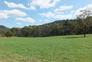 Lot 1 189 Norman Lea Road, Hampton, NSW 2790
