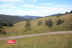 2961 Cells Road, Cells River, NSW 2424