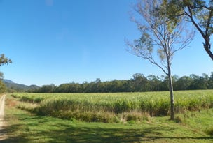 Lot 2 Paskins Road, Yalboroo, Yalboroo, Qld 4741