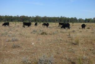 18,19, Bruxner Way, Camp Creek, NSW 4385