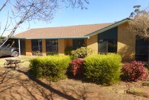 18 Willaroo Street, Peak Hill, NSW 2869