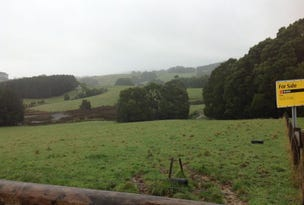 Lot 22 Old Main Road, Beech Forest, Vic 3237