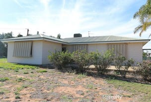 123 Thompson Road, Waikerie, SA 5330