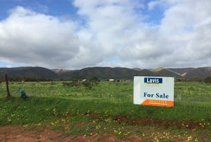 Lot 11 Muster Drive, Napperby, SA 5540
