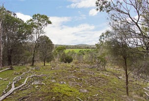 Distillery Creek, Tasman Highway, Nunamara, Tas 7259