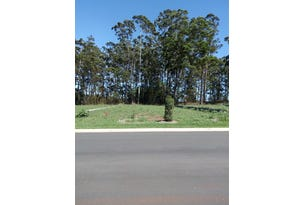 234 (Lot 929) The Ruins Way, Port Macquarie, NSW 2444