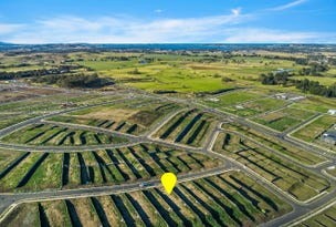 Lot 2343 Brotheridge Avenue, Calderwood, NSW 2527