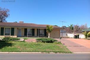 10 Christine Ave, Hillbank, SA 5112