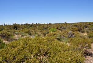 Lot 168 Wildflower Ridge Estate, Lower Chittering, WA 6084