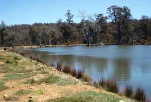 Lot 1 Highland Lakes Road (off Barren Tier), Miena, Tas 7030