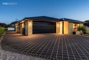 11 Waterford Drive, Sulphur Creek, Tas 7316