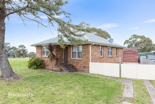 3 Cleary Street, Barrack Heights, NSW 2528