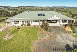 24 Hoy Road, Mountain View, Vic 3988