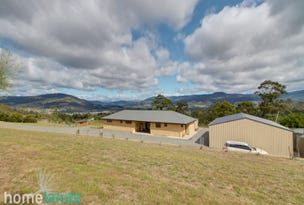 166 Knights Road, Huonville, Tas 7109
