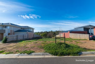 46 Willowbrae Way, Bannockburn, Vic 3331