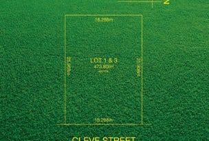1 Cleve Street, Norwood, SA 5067