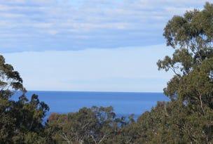 25 Ozone Cres, Lake Bunga, Vic 3909