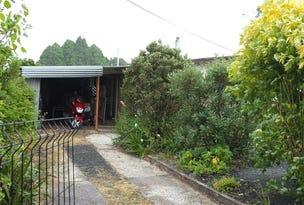 4 Little Quiggin Street, Waratah, Tas 7321