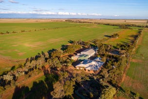 20 Hamley Bridge Road, Mallala, SA 5502