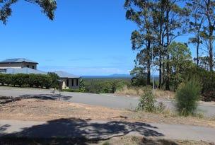 18 Eastern Valley Way, Tallwoods Village, NSW 2430