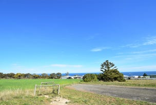 Lot 97 Darkana Way, Cape Jervis, SA 5204