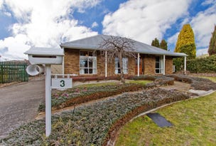 3 Stocker Street, Longford, Tas 7301