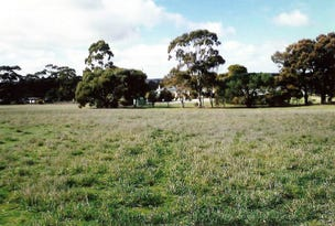 Lot 824 Henschke Road, Keyneton, SA 5353