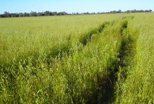 . Morotai, Deniliquin, NSW 2710
