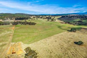 'WEEWALLA' 302 Craigie Range Road, Delegate, NSW 2633