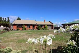 15 Ruby Flats Road, Ringarooma, Tas 7263