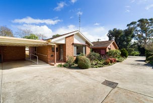 8/16 Greenhill Avenue, Castlemaine, Vic 3450