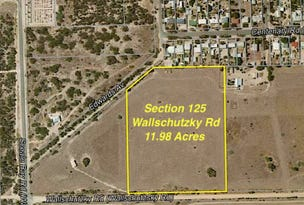 Sec 125 Wallschutzky Road, Streaky Bay, SA 5680