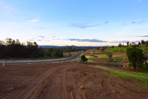 Lot 48, O'Neils Road, Withcott, Qld 4352