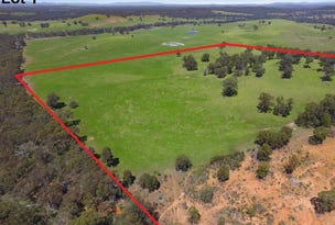 Lot 1, Cherry Tree Road, Nagambie, Vic 3608
