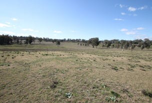 Lot 220 Corbould Street, Quirindi, NSW 2343