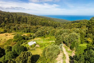 290 Kennett Road, Kennett River, Vic 3234