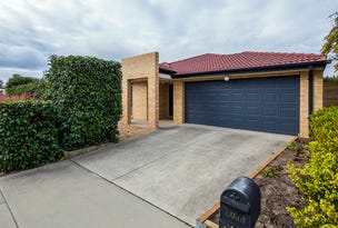 13 Judith Wright Street, Franklin, ACT 2913