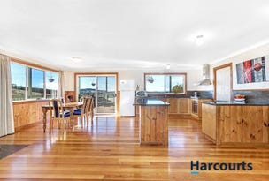155 Spellmans Road, Upper Castra, Tas 7315