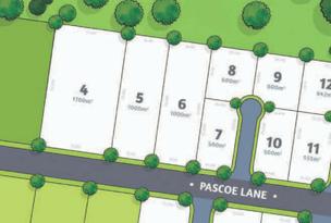 Lot 6, Pascoe Lane, Harlaxton, Qld 4350