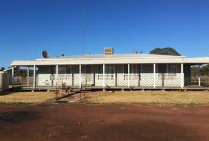 Farm 8833 Mid Western Highway, Rankins Springs, NSW 2669