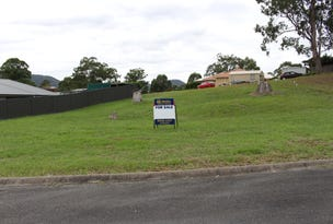 4 Higgins Cl, Gloucester, NSW 2422