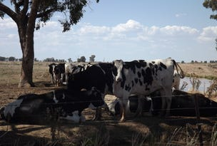 Riverina Highway, Finley, NSW 2713