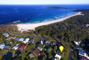 99 Malibu Dr, Bawley Point, NSW 2539