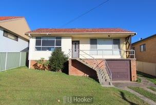 46 Alexander Parade, Arcadia Vale, NSW 2283