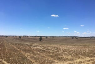 Coolamon, address available on request